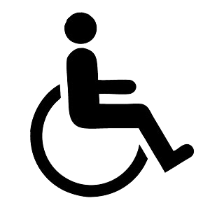 Mobility disability