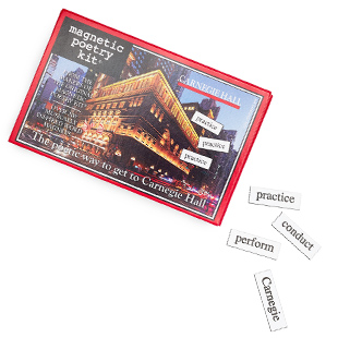 Magnetic Poetry Set