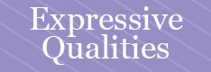 Toolbox Expressive Qualities button